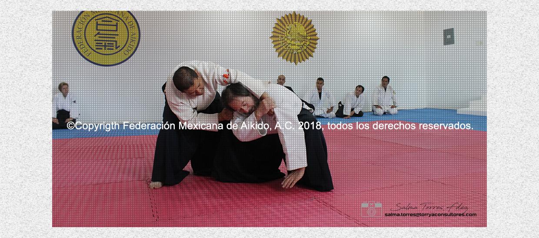 La máxima autoridad del Aikido en la República Mexicana
